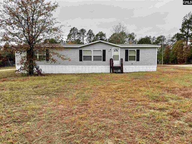 1028 Long Spires Ct, Gaston, SC 29053 (MLS #483466) :: EXIT Real Estate Consultants