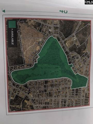 1 Fairway, New Ellenton, SC 29809 (MLS #483571) :: EXIT Real Estate Consultants