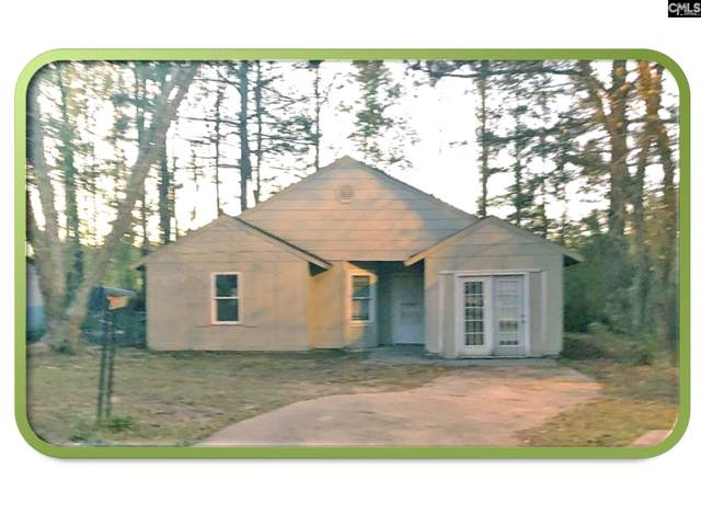 301 Greenlake Drive, Hopkins, SC 29061 (MLS #483579) :: EXIT Real Estate Consultants
