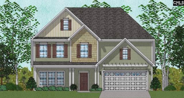 207 Aldergate Drive Lot 10, Lexington, SC 29073 (MLS #483616) :: EXIT Real Estate Consultants