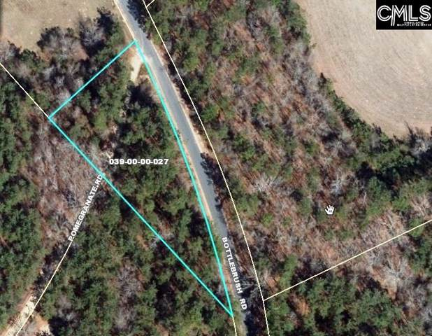 0 Bottlebrush Road, North, SC 29112 (MLS #483677) :: EXIT Real Estate Consultants