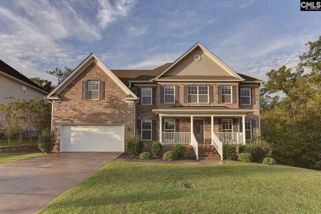 429 Maypop Lane, Irmo, SC 29063 (MLS #483709) :: EXIT Real Estate Consultants