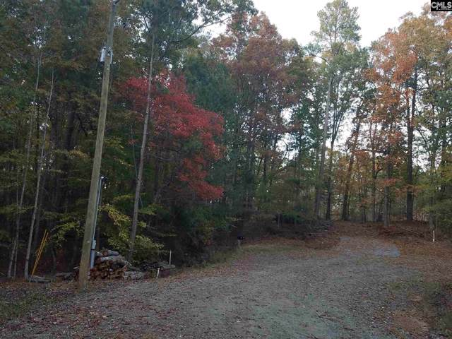 109 Myrtle Lane Lot 16, Blair, SC 29015 (MLS #483780) :: The Olivia Cooley Group at Keller Williams Realty