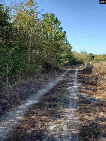 0 Highway 3 Road Tract 5, North, SC 29112 (MLS #483945) :: EXIT Real Estate Consultants