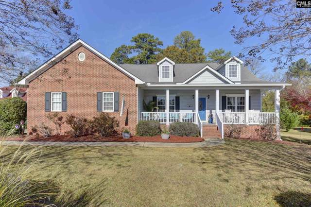 500 Caro Lane, Chapin, SC 29036 (MLS #483984) :: The Meade Team