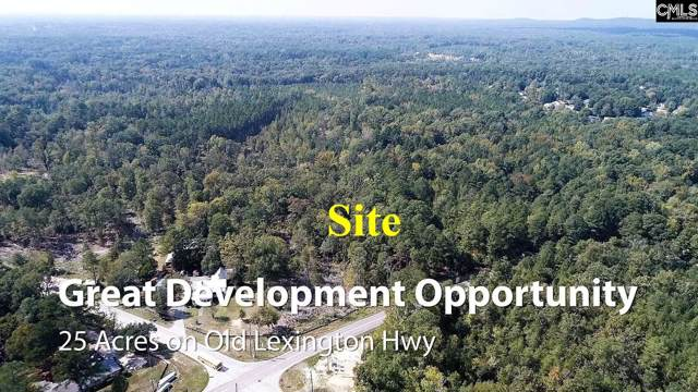 0 Old Lexington Highway, Chapin, SC 29036 (MLS #483987) :: EXIT Real Estate Consultants