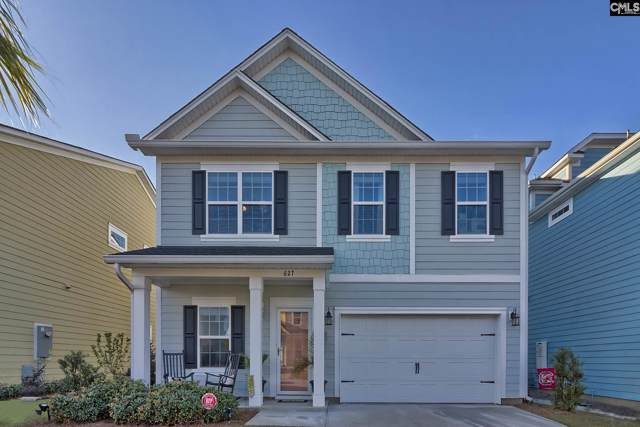 627 Pinnacle Way, Lexington, SC 29072 (MLS #484081) :: EXIT Real Estate Consultants