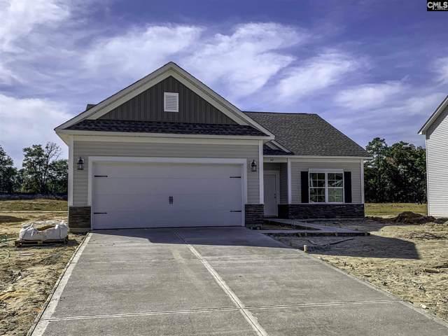 148 Drummond Way, Lexington, SC 29072 (MLS #484086) :: EXIT Real Estate Consultants