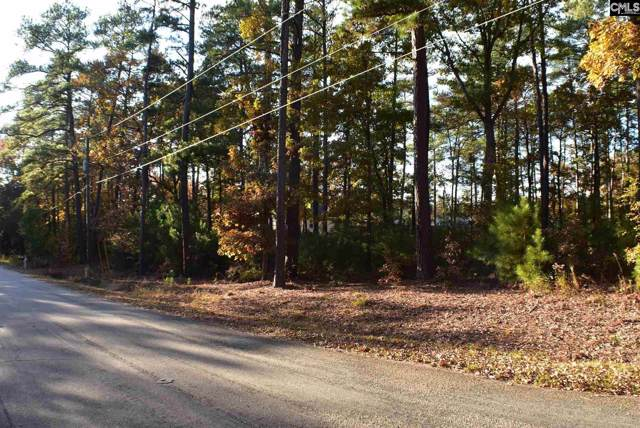 210 Bethview Drive #5, Irmo, SC 29063 (MLS #484157) :: EXIT Real Estate Consultants
