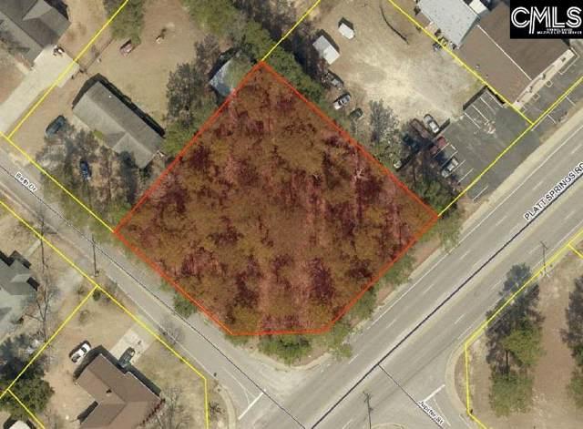 0 Platt Springs Road, West Columbia, SC 29169 (MLS #484231) :: EXIT Real Estate Consultants