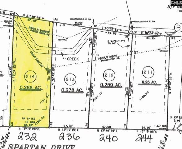 232 Spartan Drive, Columbia, SC 29212 (MLS #484232) :: EXIT Real Estate Consultants