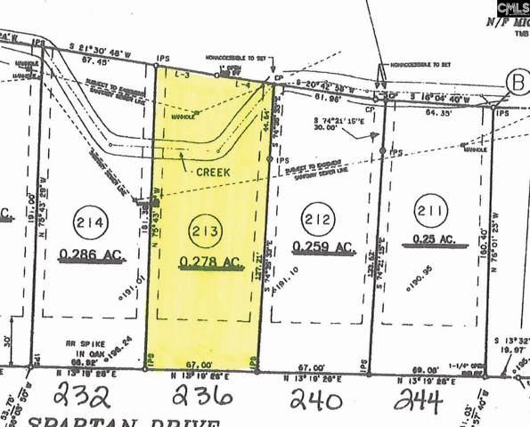 236 Spartan Drive, Columbia, SC 29212 (MLS #484236) :: EXIT Real Estate Consultants
