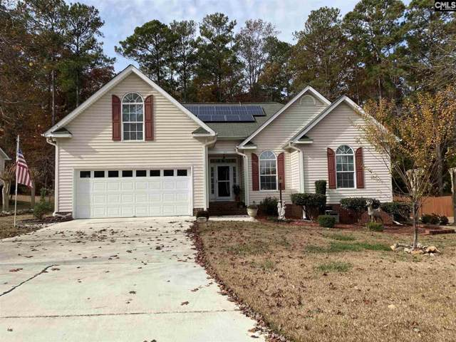 152 Kerry Gibbons Drive, Chapin, SC 29036 (MLS #484258) :: EXIT Real Estate Consultants