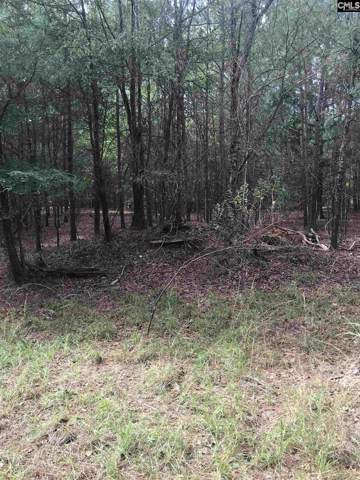 Lot 5 & 6 Peninsula Drive, Prosperity, SC 29127 (MLS #484418) :: Resource Realty Group