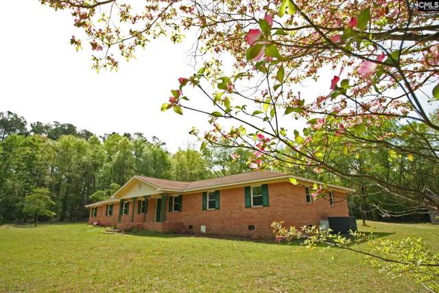 219 A&B Lake Shore Circle, Wagener, SC 29164 (MLS #484464) :: EXIT Real Estate Consultants