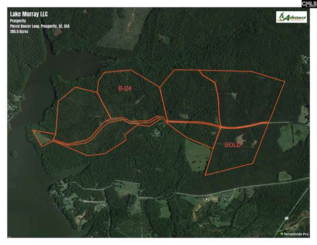 Pierce Boozer Loop Rd, Prosperity, SC 29127 (MLS #484482) :: The Meade Team