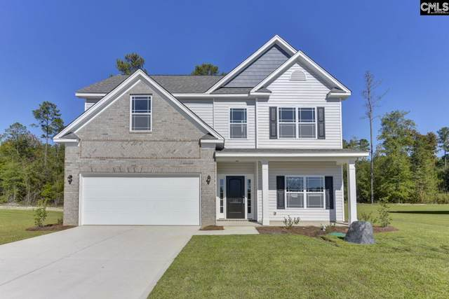 749 Amicks Ferry Road, Chapin, SC 29036 (MLS #484645) :: EXIT Real Estate Consultants
