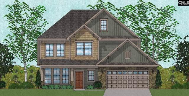 1346 Tamarind Lane 228, Chapin, SC 29036 (MLS #484679) :: Resource Realty Group