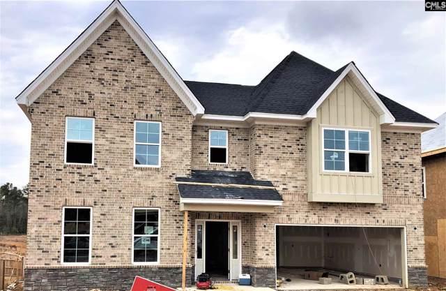 1313 Portrait Hill Drive, Chapin, SC 29036 (MLS #484723) :: EXIT Real Estate Consultants