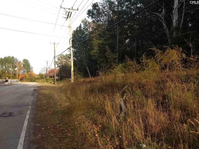2216 Fish Hatchery Lane, West Columbia, SC 29172 (MLS #484785) :: Loveless & Yarborough Real Estate