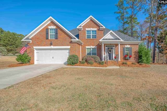 601 Webster Pointe Drive, Chapin, SC 29036 (MLS #484850) :: EXIT Real Estate Consultants