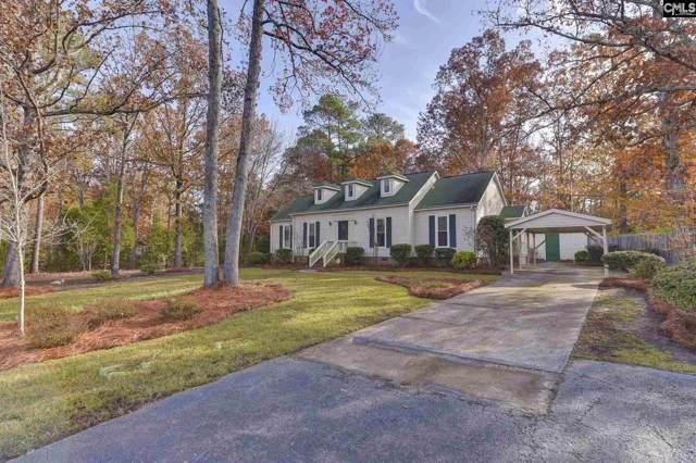 243 Smallwood Drive, Chapin, SC 29036 (MLS #485025) :: The Olivia Cooley Group at Keller Williams Realty