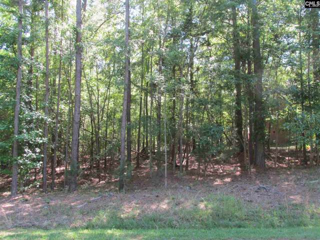 2224 Island Trail, Chapin, SC 29036 (MLS #485039) :: The Olivia Cooley Group at Keller Williams Realty