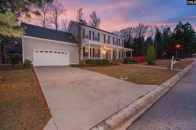 201 Serenity Drive, Lexington, SC 29072 (MLS #485100) :: The Meade Team