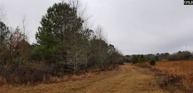 0 Mt. Zion Rd, Eastover, SC 29044 (MLS #485187) :: EXIT Real Estate Consultants