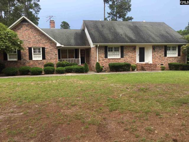 1195 Ruple Drive, Orangeburg, SC 29118 (MLS #485317) :: EXIT Real Estate Consultants