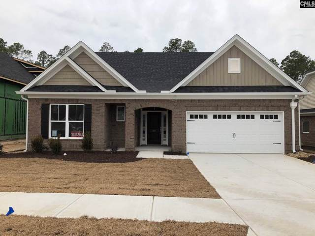 221 Mary Locke Court, Elgin, SC 29045 (MLS #485470) :: NextHome Specialists