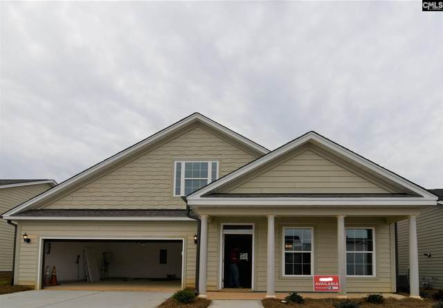 238 Matisse Trail, Chapin, SC 29036 (MLS #485573) :: The Meade Team