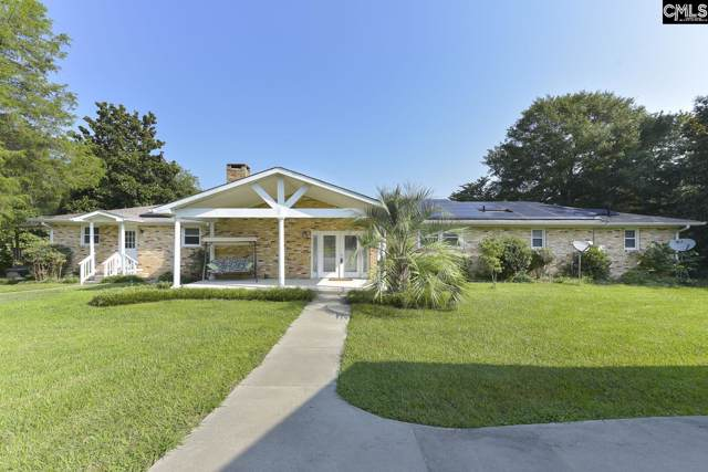 221 Shady Acres Drive, Chapin, SC 29036 (MLS #485694) :: EXIT Real Estate Consultants