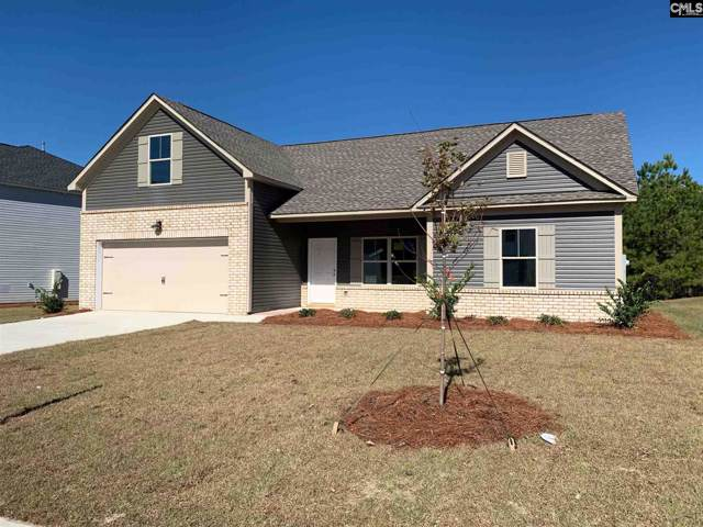 163 Drummond Way, Lexington, SC 29072 (MLS #485730) :: EXIT Real Estate Consultants