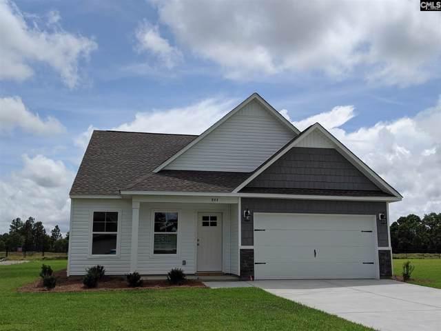 844 Winter Flower Drive, Lexington, SC 29073 (MLS #485785) :: EXIT Real Estate Consultants