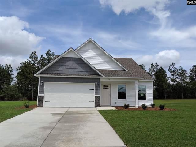 417 Crassula Drive, Lexington, SC 29073 (MLS #485794) :: EXIT Real Estate Consultants
