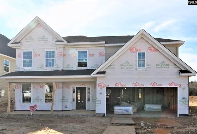 1317 Portrait Hill Drive, Chapin, SC 29036 (MLS #485944) :: EXIT Real Estate Consultants