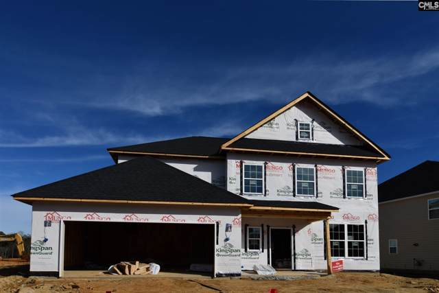1312 Portrait Hill Drive, Chapin, SC 29036 (MLS #485946) :: EXIT Real Estate Consultants