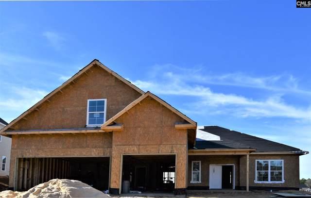2323 Portrait Hill Drive, Chapin, SC 29036 (MLS #485949) :: EXIT Real Estate Consultants