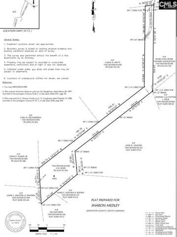 1223 Corley Mill Road, Lexington, SC 29072 (MLS #485973) :: EXIT Real Estate Consultants