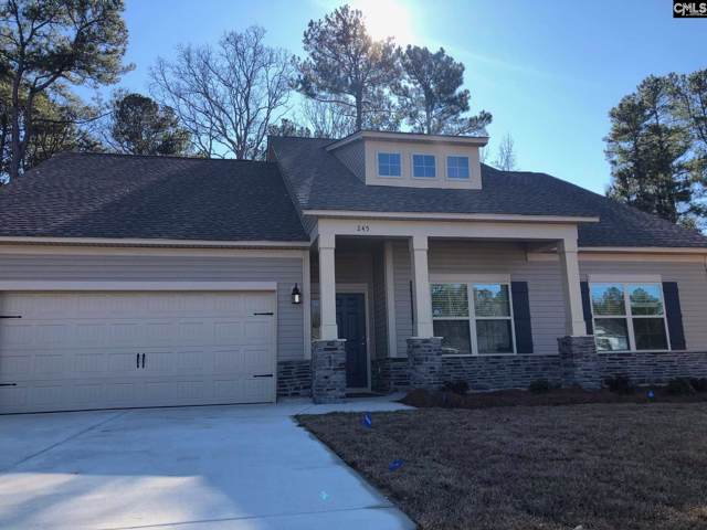 245 Elsoma Drive, Chapin, SC 29036 (MLS #486063) :: NextHome Specialists