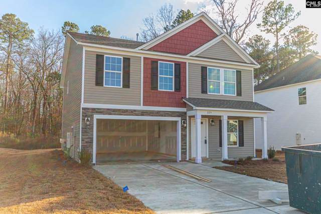 225 Elsoma Drive, Chapin, SC 29036 (MLS #486106) :: NextHome Specialists