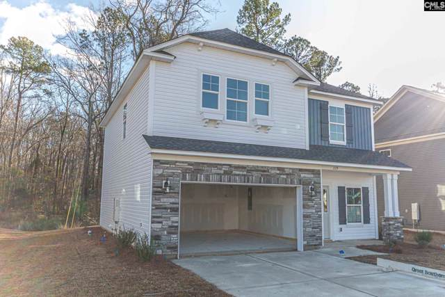 229 Elsoma Drive, Chapin, SC 29036 (MLS #486107) :: NextHome Specialists
