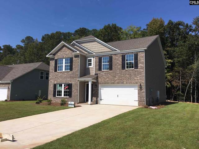 378 Dolly Horn Lane, Chapin, SC 29036 (MLS #486162) :: EXIT Real Estate Consultants
