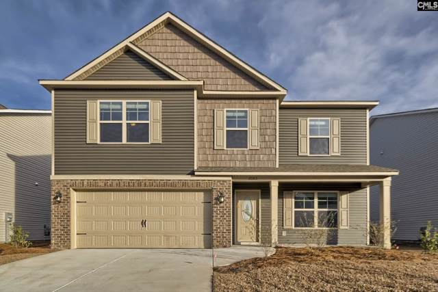 117 Sunsation Drive, Chapin, SC 29036 (MLS #486167) :: EXIT Real Estate Consultants