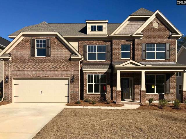 211 Chapin Brook Court, Chapin, SC 29036 (MLS #486169) :: EXIT Real Estate Consultants