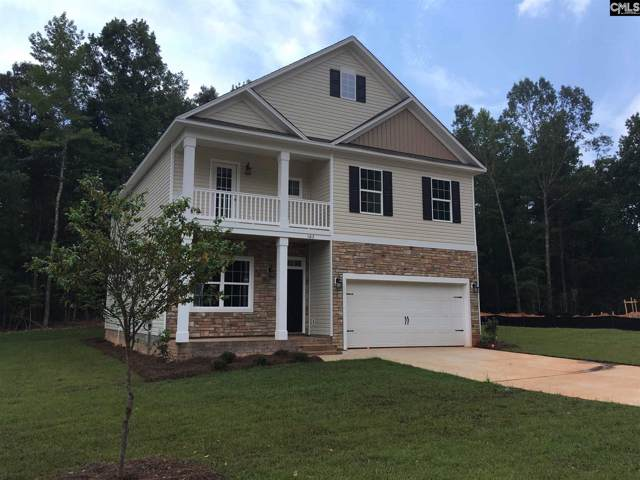 366 Dolly Horn Lane, Chapin, SC 29036 (MLS #486178) :: Home Advantage Realty, LLC