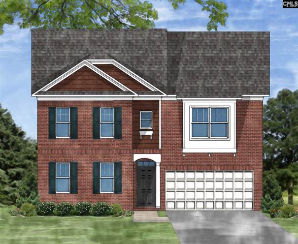 229 Cedar Hollow Lane, Irmo, SC 29063 (MLS #486235) :: EXIT Real Estate Consultants