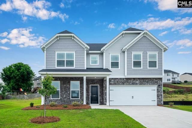227 Sunny View Lane, Lexington, SC 29073 (MLS #486251) :: EXIT Real Estate Consultants