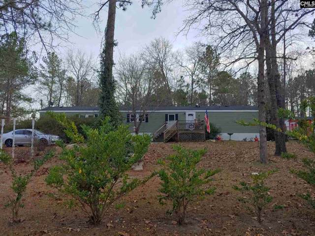 124 Silver Oak Lane, Gaston, SC 29053 (MLS #486274) :: The Meade Team